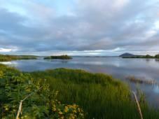Lake-Myvatn