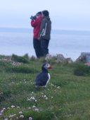 blog-Latrabjarg-cliffs-769x1025