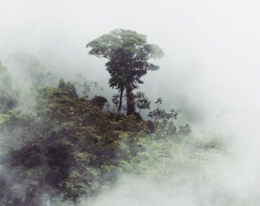colombia-scenic-3-1025x814