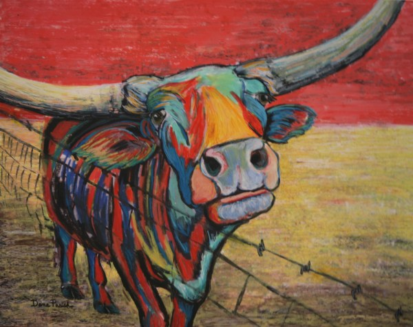 Texas Longhorn Cattle Parish Galleries