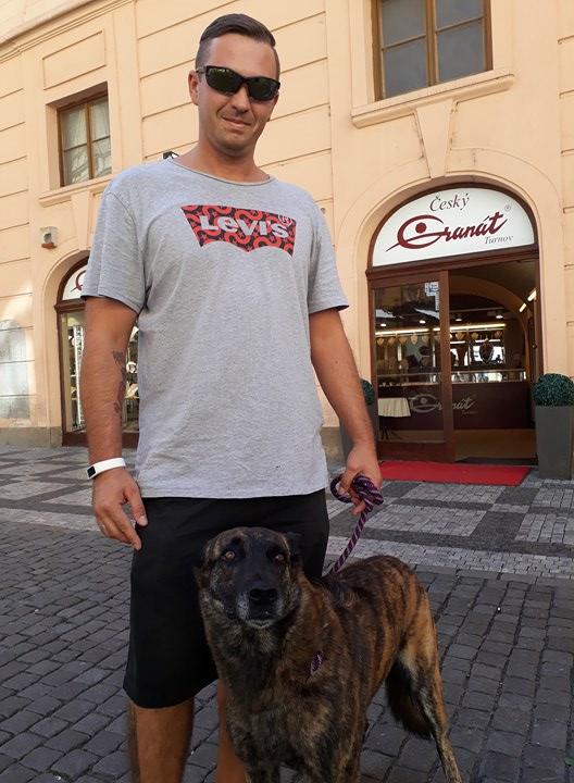 Prague doggo Martin
