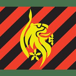 dmu football badge