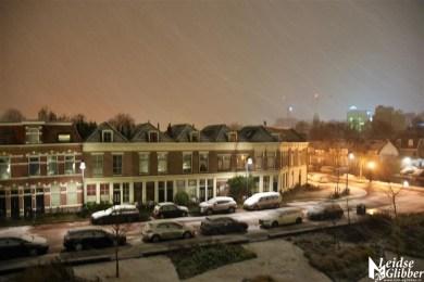 Sneeuw 31 januari (4)