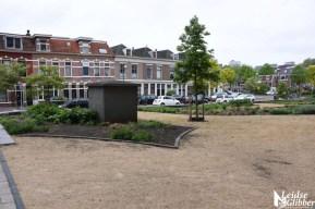 Perk Musschenbroekstraat 2019 (24)