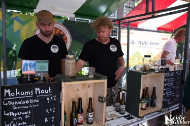 Bierfestival en kunstmarkt (7)