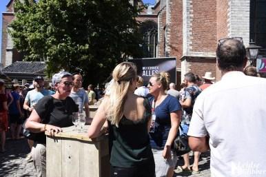 Bierfestival en kunstmarkt (5)