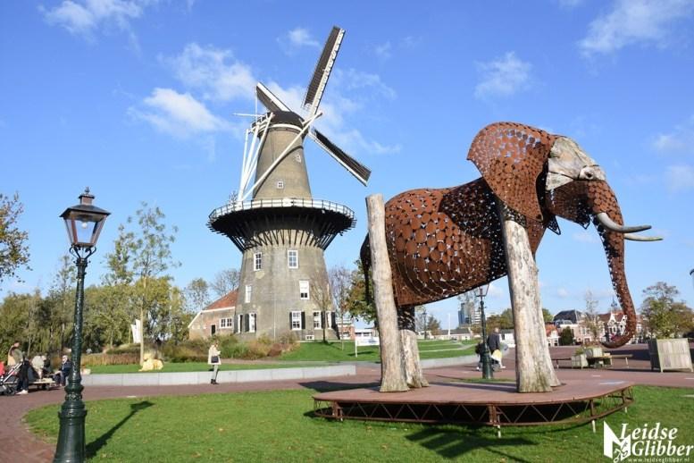 Leiden Zoo (2)