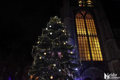 Joris Kerstboom (8)