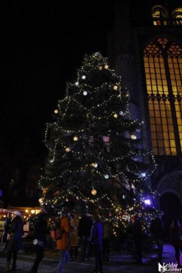 Joris Kerstboom (6)