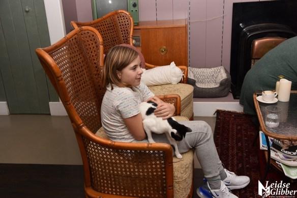 Kattencafé Sophie (16)