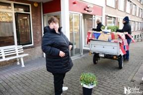 Tulpen Haagwijk CHDR Rederij (45)