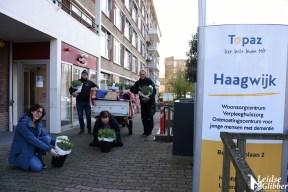 Tulpen Haagwijk CHDR Rederij (44)