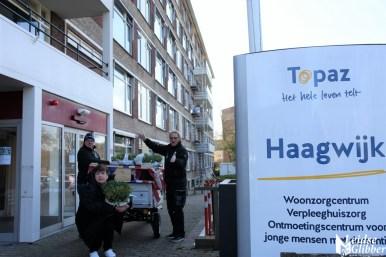 Tulpen Haagwijk CHDR Rederij (35)