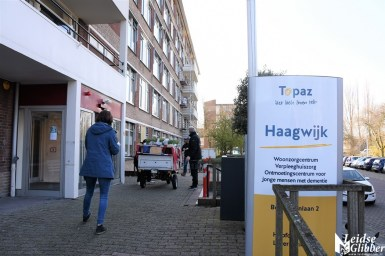 Tulpen Haagwijk CHDR Rederij (27)