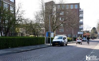 Tulpen Haagwijk CHDR Rederij (23)