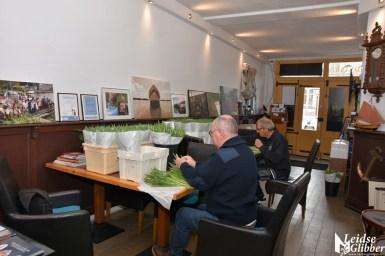 Tulpen Haagwijk CHDR Rederij (9)