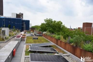 Roof bar PLNT (20)