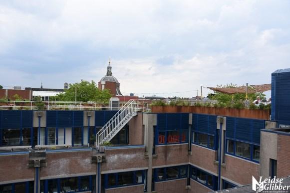 Roof bar PLNT (14)
