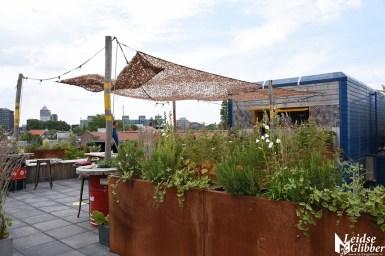 Roof bar PLNT (3)