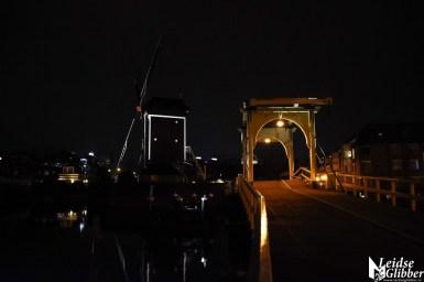 Rembrandtbrug en Molen de Put (6)