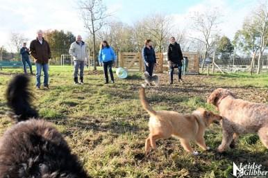 Honden speelveld Zoeterwoude (31)