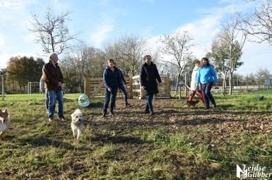 Honden speelveld Zoeterwoude (17)