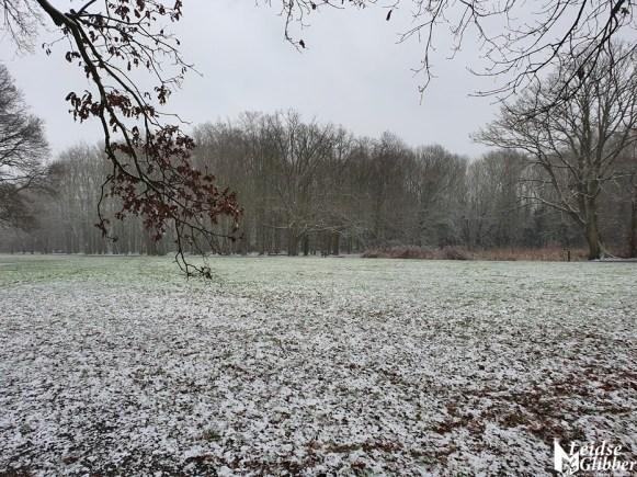 Sneeuw 16 januari 2020 (17)