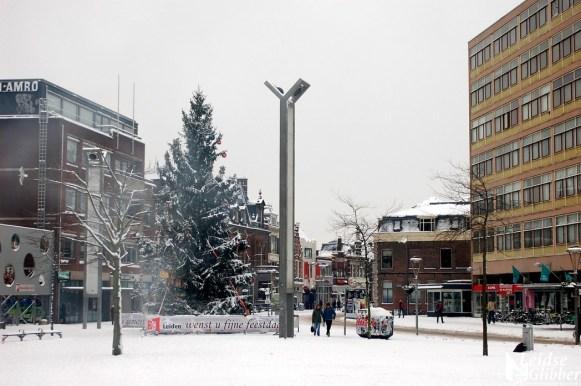 Winter19december (17)