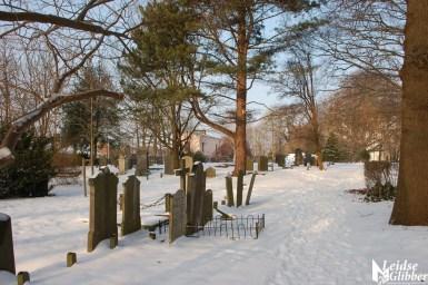 Sneeuw 22janu (22)