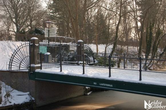 Sneeuw 22janu (18)