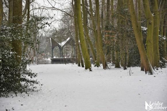 6 Sneeuw De Leidse Hout (29)