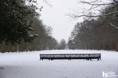 6 Sneeuw De Leidse Hout (22)