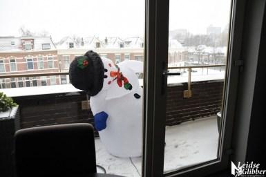 sneeuw (60)