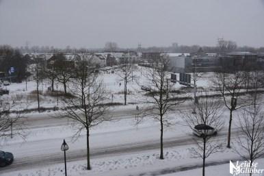 sneeuw (52)