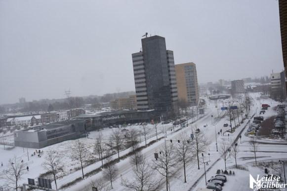 sneeuw (41)