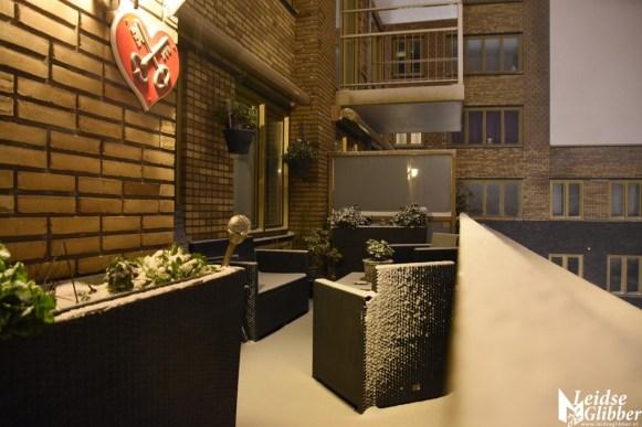 sneeuw (16)