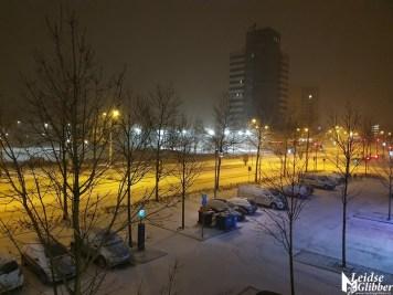 sneeuw (12)