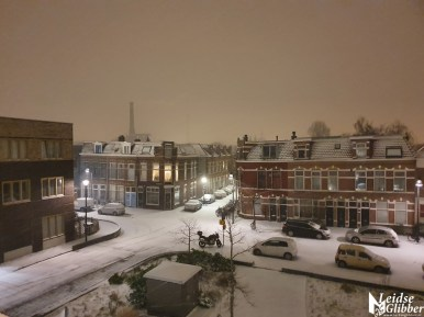 sneeuw (6)