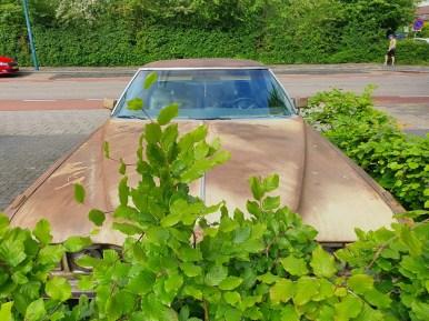 Cadillac Oldtimer (8)