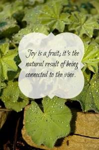 joy is a fruit