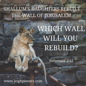 Shallum's daughters rebuilt the wall of Jerusalem. What wall will you rebuild?(Nehemiah 3:12).