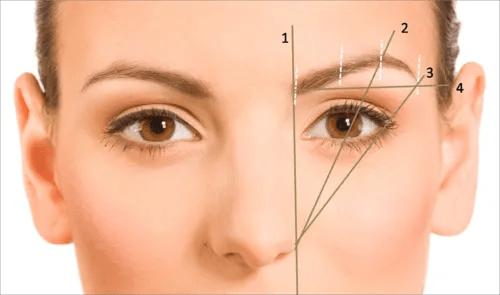 eyebrowsshape