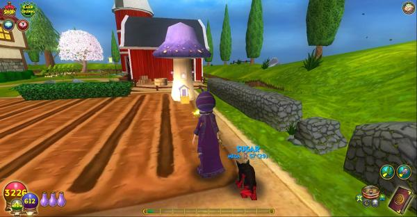Wizard 101 Amber Stone - Year of Clean Water