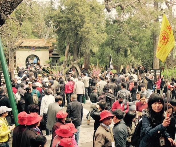 The Imperial Garden The Forbidden City
