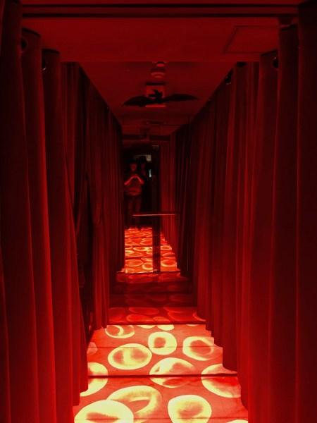 Main corridor The Vampire Cafe Tokyo