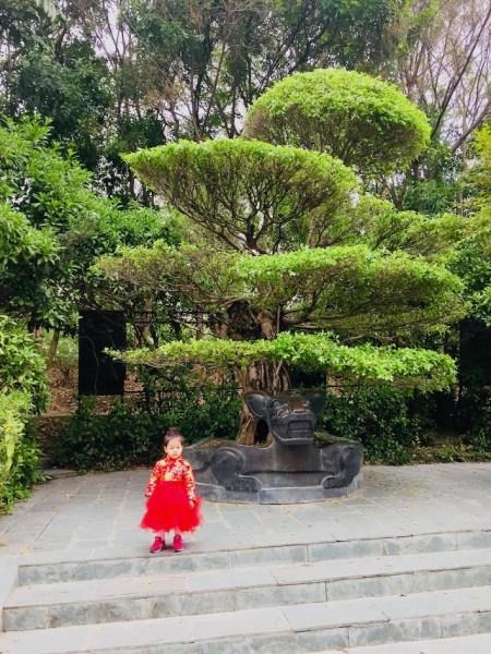Shenzhen International Garden and Flower Expo Park China.
