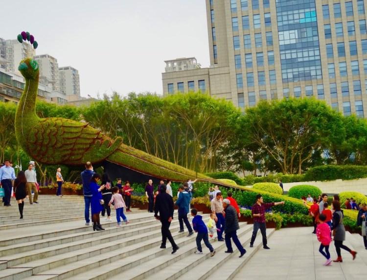 Visit Shenzhen International Garden and Flower Expo Park.