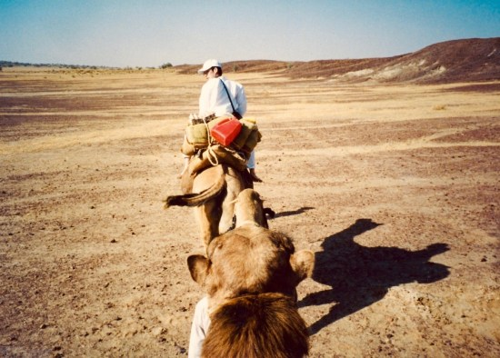 Camel Safari Thar Desert India.