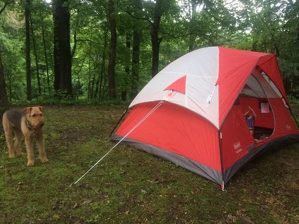 New tent!