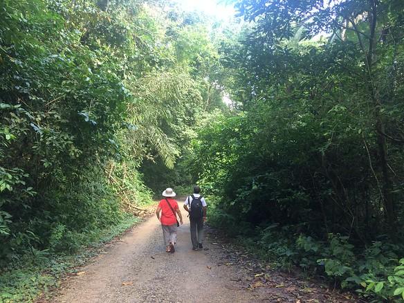 Viator Tour - Soberania National Park